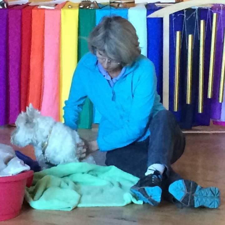 L'animal enchanté : La thérapie par le son et la couleur pour vous et pour votre animal - Éducateur spécialisé en soins alternatifs - AoA Formation