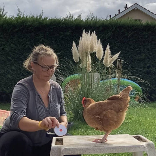 Clicker poules niveau 1 - AoA Formation